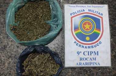 Homem é preso com maconha enterrada em Araripina