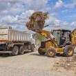 Prefeitura de Gravatá realiza mutirão de limpeza em Avencas