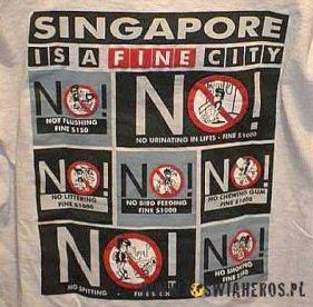 Pamiątkowa koszulka z Singapuru. (loswiaheros.pl)