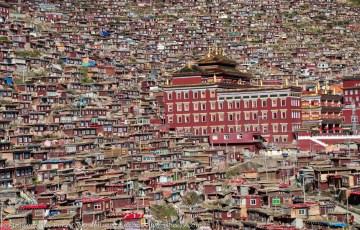 Mieszkania studentów buddyzmu