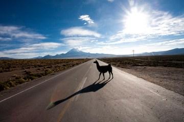 Zapierająca dech w piersiach przyroda Boliwii.