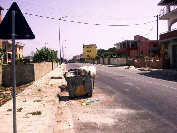 Zaniedbana albańska ulica