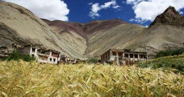 Wioska Rumbak w Ladakhu