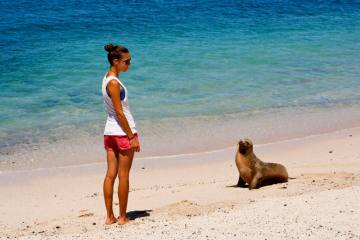 Podróżniczka Luiza Turek i foka