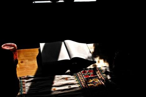 Biblia huculszczyzny Na wysokiej połoninie Stanisława Vincenza w porannym słońcu (Fot. Robert Bury)