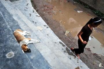 Spacer przez Katmandu - foto