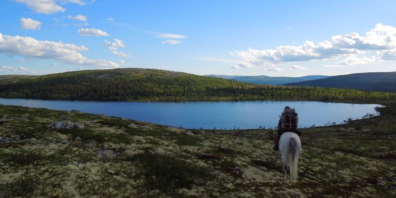 Konna podróż przez Norwegię - foto