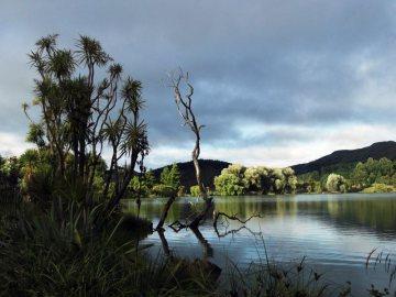 Jezioro Tutira w Nowej Zelandii