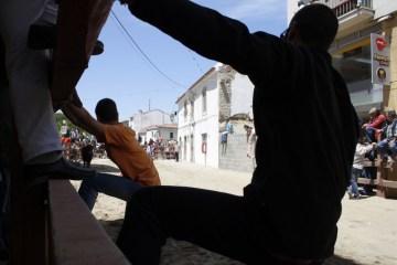 Ucieczka przed bykiem w trakcie ulicznej gonitwy - zdjęcia z Portugalii