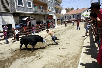 Uliczna corrida - zdjęcia z Portugalii