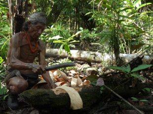 Mężczyzna z plemienia Menjtawajów. Zdjęcia z Indonezji