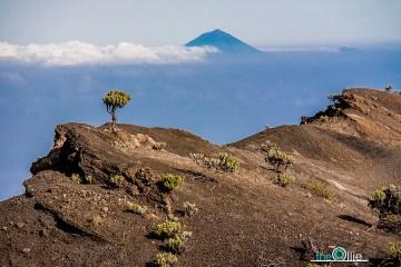 Pustynny krajobraz na zboczach wulkanu - zdjęcia z podrózy do Indonezji