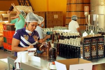 Produkcja tequili w Meksyku