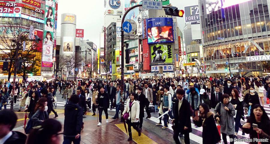 Shibuya - znane skrzyżowanie ulic w Tokio