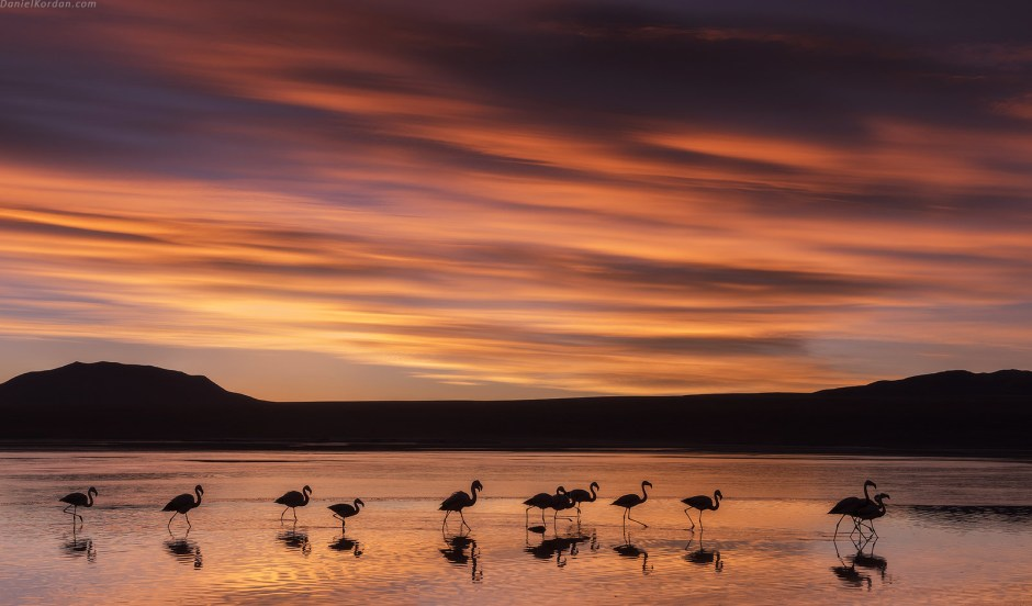 Boliwia, Salar De Uyuni, zachod slonca, flamingi