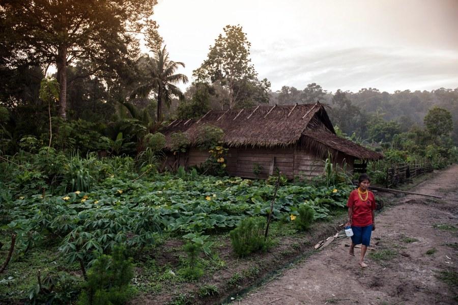 Wieś na wyspie Siberut - zdjęcia z Indonezji