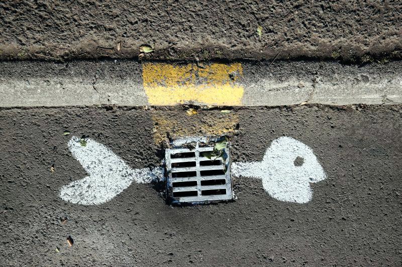 Islandia, Wielkie Święto Ryby, specjalne graffiti