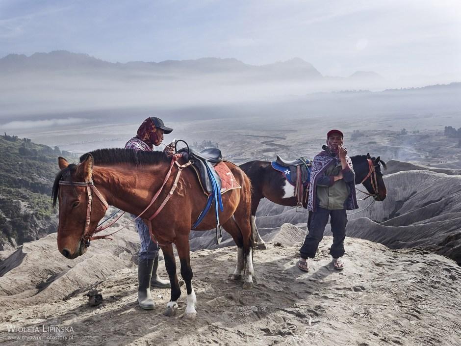 Indonezja, Jawa, konie dla turystów nad wulkanem Bromo