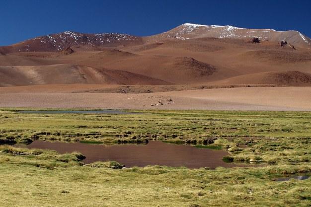 Chile, jezioro na pustyni Atacama