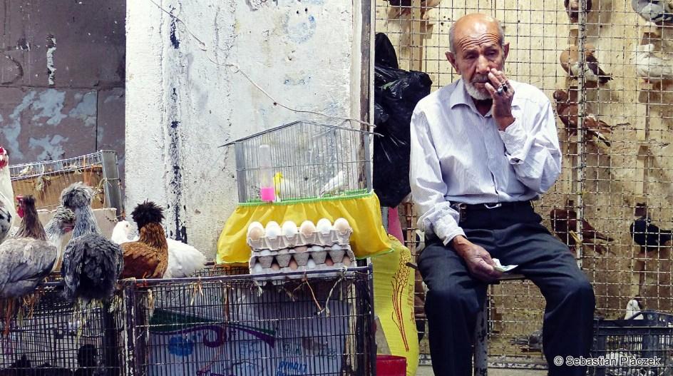 Iran, Isfahan, uliczny handel, sprzedawca kur - zdjęcia