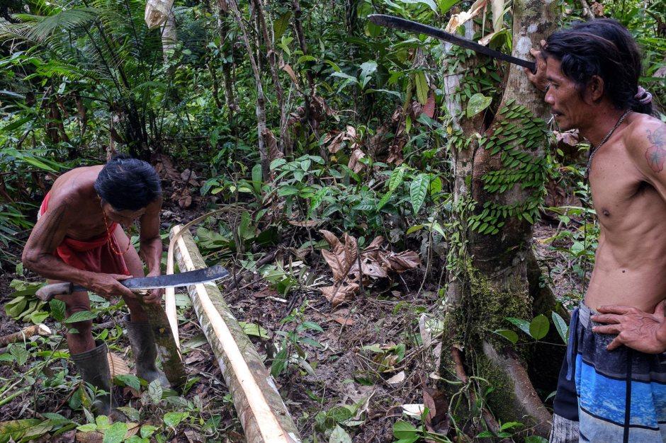 Mentawaje polowanie w dzungli, Indonezja, Sumatra, Mentawaje