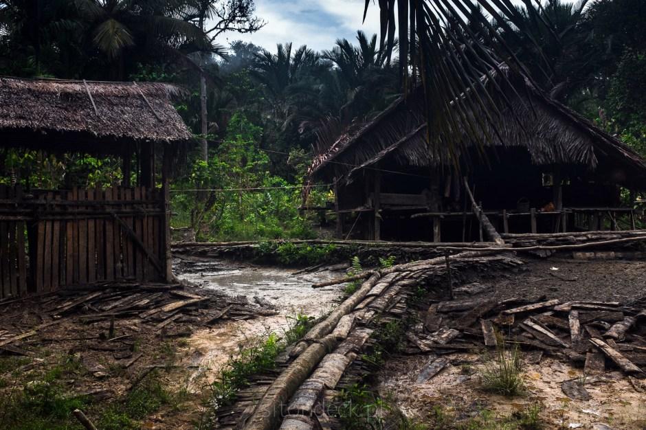 Sumatra, Indonezja, wieś Mentawajów, dżungla, podróże