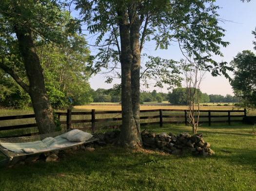hammock on the farm