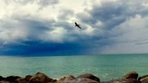 Private beach, Florida