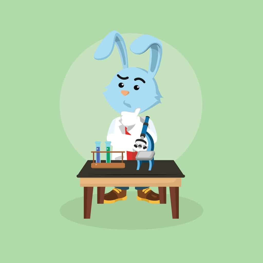 Bunny Science Activities