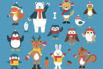 Winter Animals Curriculum