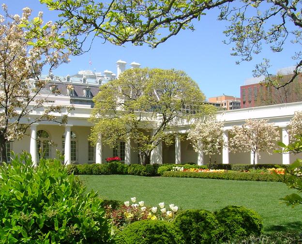 white-house-rose-garden