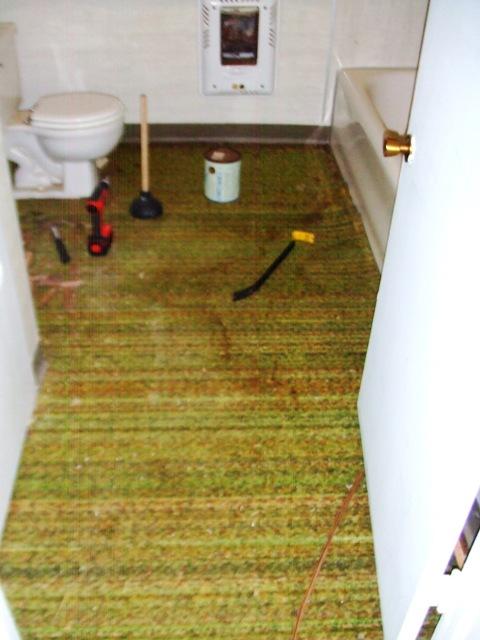 94 bungalow bathroom green carpet
