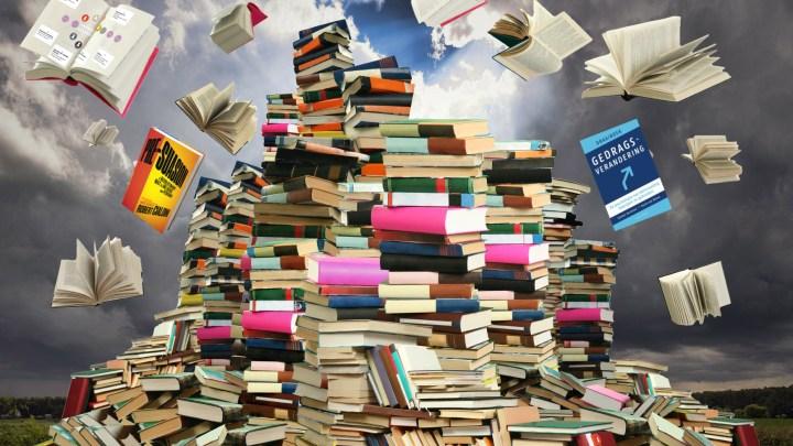 Nog meer leesvoer: van nudging tot information overload?