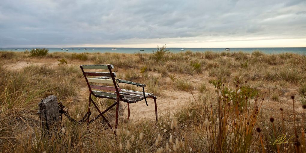 Portsea Chair Perrin Clarke Photography