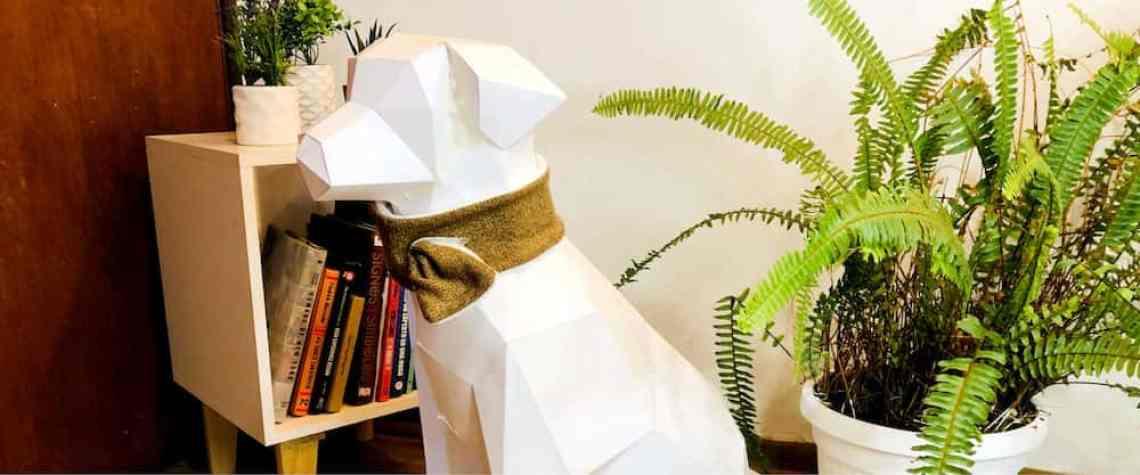 bufanda perro