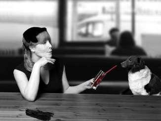 Regalar un Perro en Navidad: Puntos a Tener en Cuenta