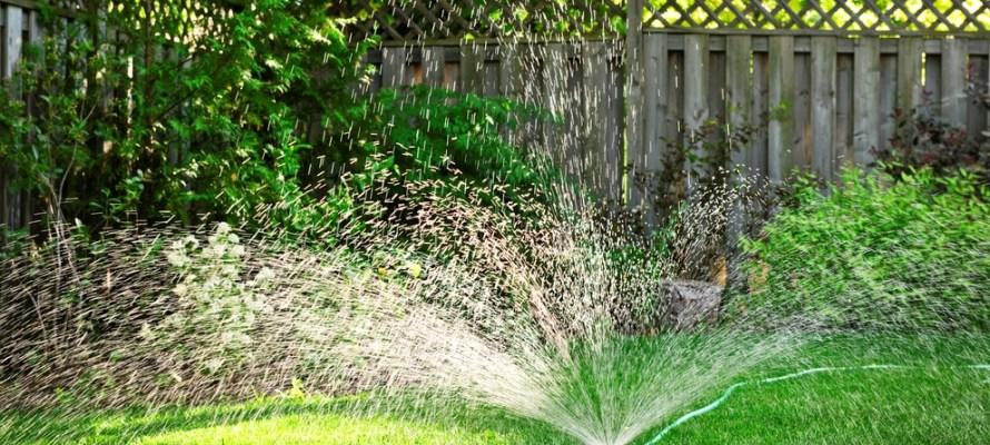 Sprinkler on lawn for blog post.