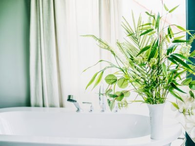 Breathe New Life Into Your Home With A Stylish Houseplant
