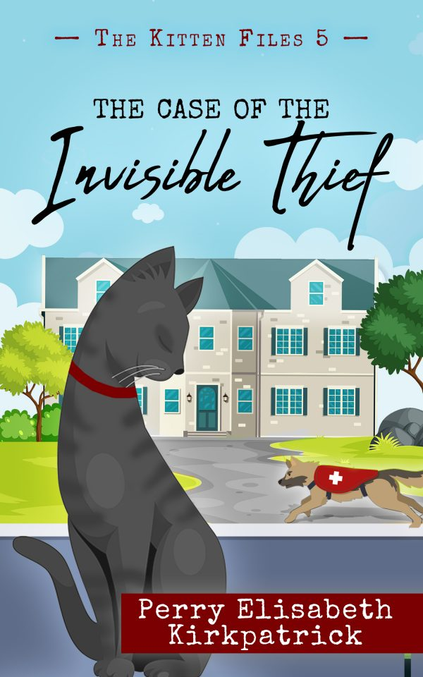 Book Cover: The Case of the Invisible Thief