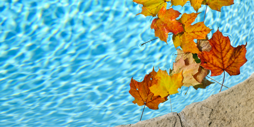 Winter is Coming – What does it mean to winterize your pool?