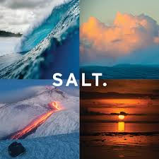 salt optics logo