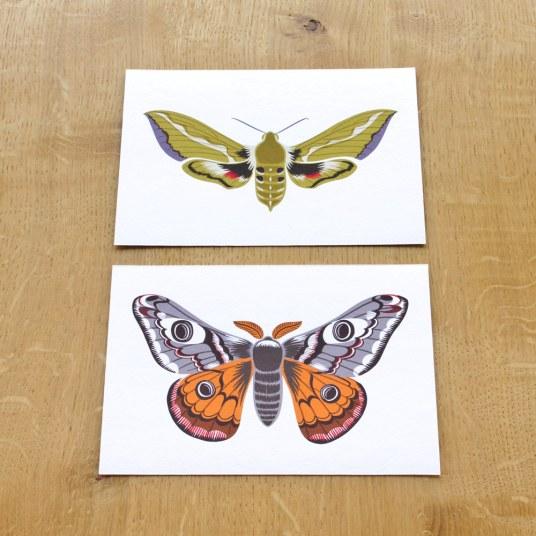gicleeprint_moths