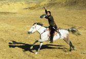 Sword on horseback