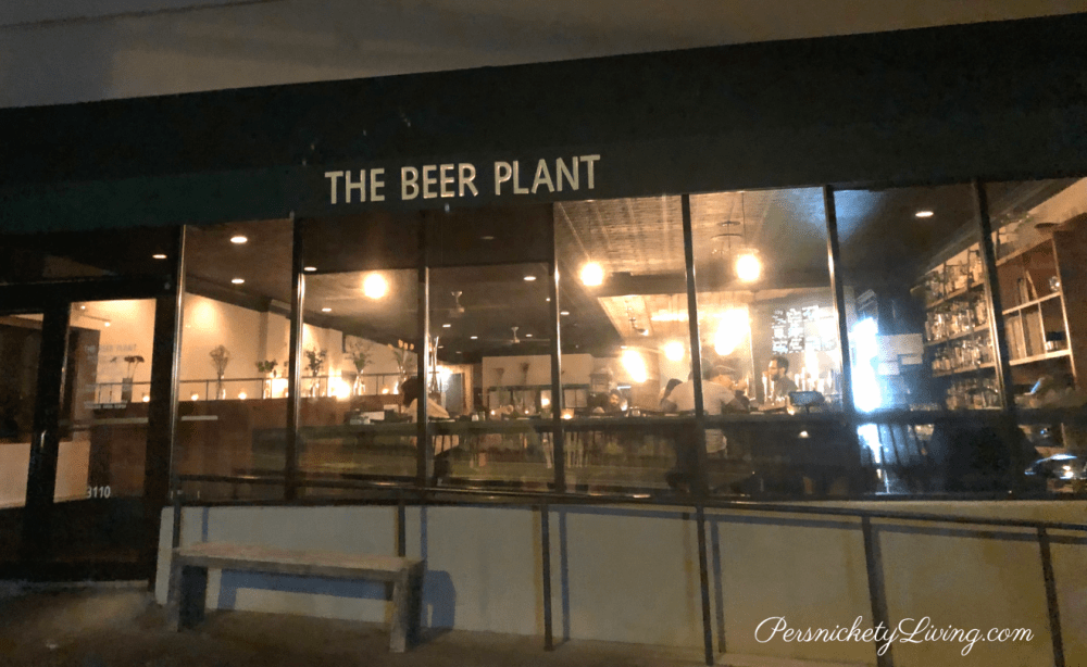 The Beer Plant -- Great for late night snacking.