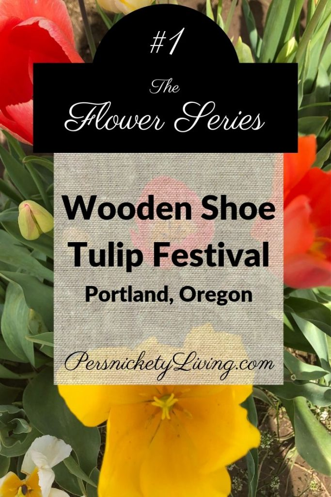 Flower Series #1: Wooden Shoe Tulip Festival Portland Oregon