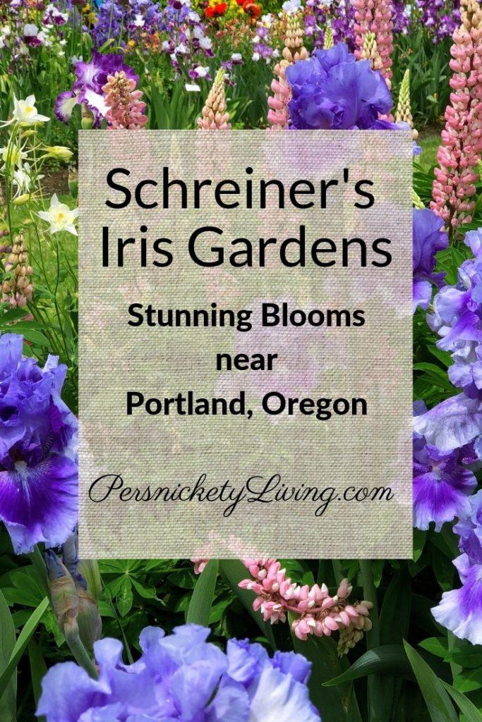 Schreiners Iris Gardens Pin