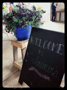 Welcome to Schreiner's Iris Gardens