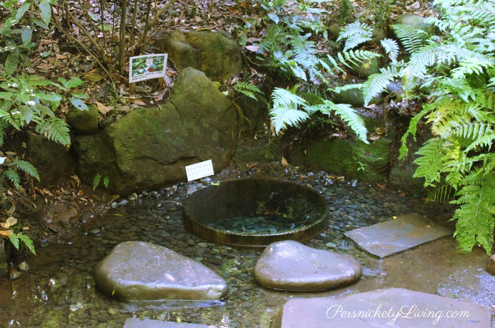 Kiyomasa's Well Meiji Jingu Garden Tokyo