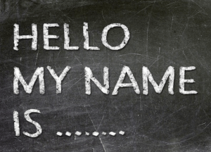 All About the Name: Assigning Demographically Appropriate Names to Data-Driven Entities