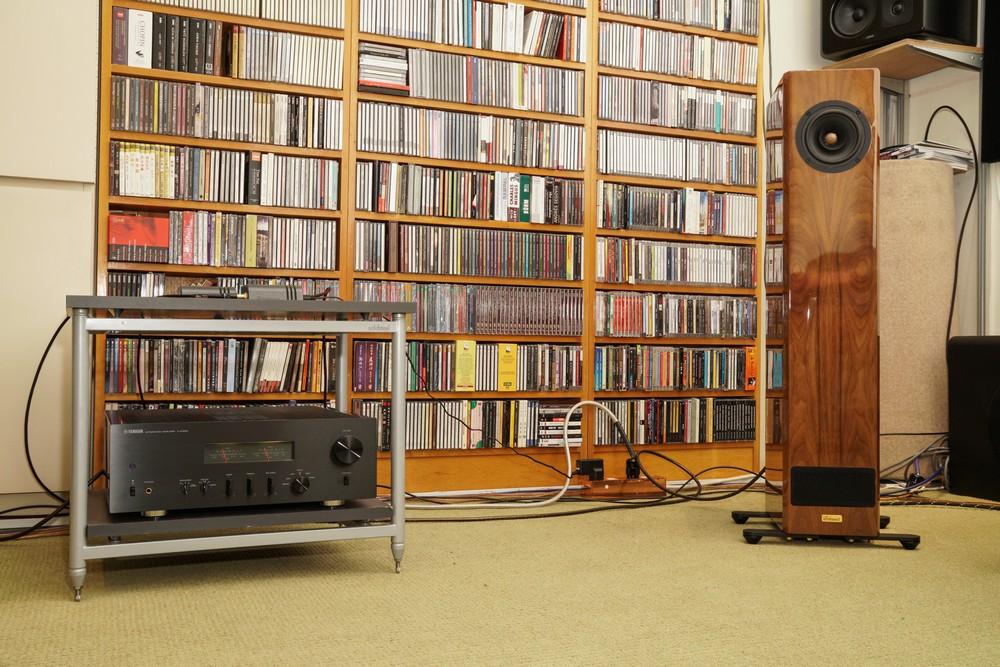 ForesT Audio Alnico S5 - 重新審視何謂全頻